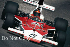 Emerson Fittipaldi McLaren M23 German Grand Prix 1974 Photograph 1