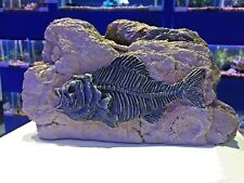 Large Piranha Fossil Rock Cave Aquarium Ornament - Prehistoric Fish Tank 764