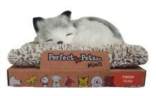 Perfect Petzzz Mini - Huggable Breathing Dog - Alaskan Husky