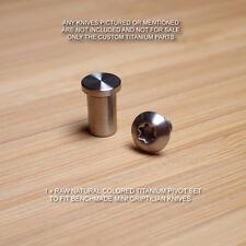 Benchmade 555 556 557 558 Mini Grip Griptilian 2PC Titanium Pivot Screw Set  RAW