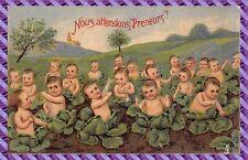 Carte Postale Fantaisie - Gaufrée - Bébé dans les choux