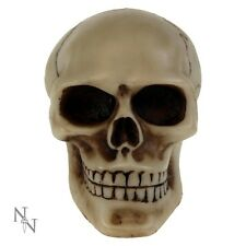 GEAR KNOB CAR RESIN SKULL SKELETON FUN NOVELTY NEMESIS NOW NEW AND BOXED