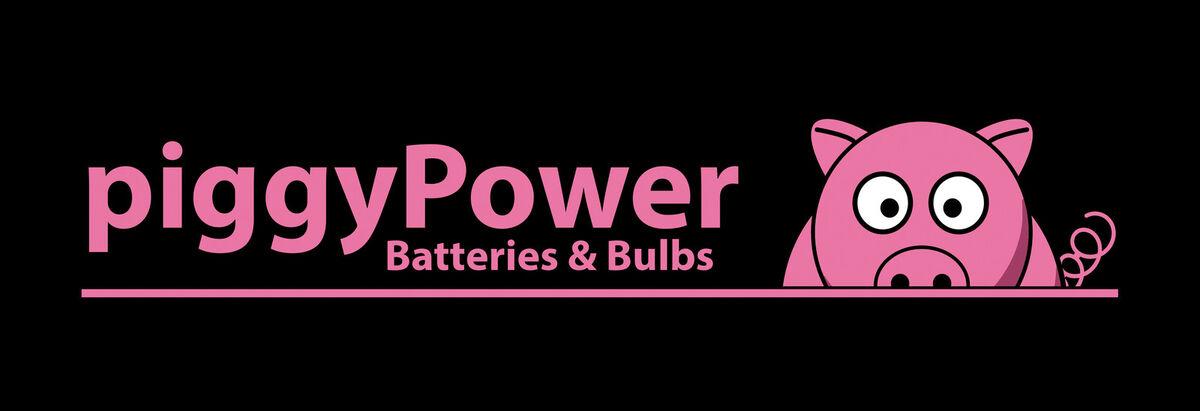 Piggy_powerbatteries1
