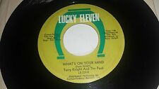 TERRY KNIGHT AND THE PACK What's On Your / A Change LUCKY ELEVEN 229 GARAGE 45