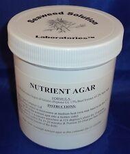 Nutrient Agar, 350ml - Sterilzed, Yields 14-16, 100mm Petri Dishes