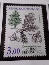 FRANCE 1985, timbre 2386, FLORE ARBRE, TREE, QUERCUS, neuf** VF MNH STAMP