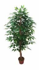 Artificial Bushy Ficus Tree - 145cm