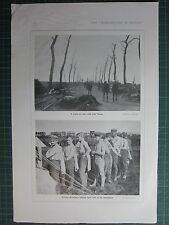 1917 WWI WW1 PRINT ~ SCENE ON THE ROAD NEAR YPRES ~ GERMAN PRISONERS VACCINATED