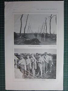 1917 WWI WW1 Aufdruck ~ Szene Auf Der Straße Nahe Ypres ~ Deutsche Gefangenen