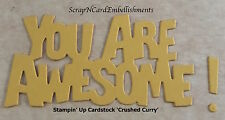 • • • Die Cuts ~ YOU ARE AWESOME x8 M/C~ Stampin Up C/S ~ Cards, Scrapbooking