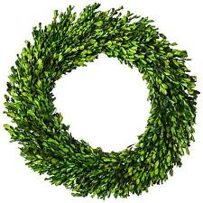 "Preserved Boxwood Leaves Wreath - (21.25"") - Smith & Hawken™"