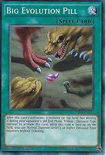 YU-GI-OH CARD: BIG EVOLUTION PILL - SR04-EN023 - 1ST EDITION