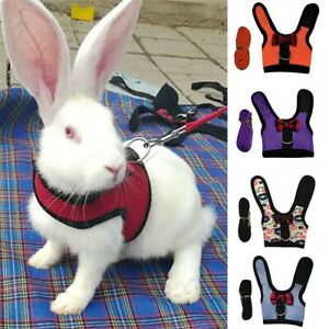 Mesh Lead Vest Harness With Leash for Animal Pet Rabbit Bunnys Accessory Supplie
