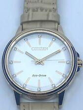 CITIZEN Chandler Eco-Drive Diamond Silver Dial Ladies Watch FE7033-08A