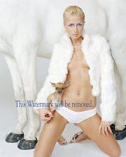 Paris Hilton, Celebrity,  Movie Star 8X10 GLOSSY PHOTO PICTURE IMAGE ph26