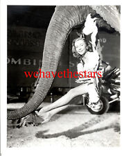 Vintage Gloria Grahame SEXY LEGS '52 GREATEST SHOW ON EARTH Publicity Portrait