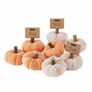 Mud Pie H0 Fall Thanksgiving Pumpkin Place Card 2600546 Choose Color