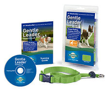 PetSafe Gentle Leader Head Collar Medium Apple