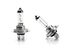 LAMPADINA incandescenza h7 12v55w e8 px26d/LAMPADINA