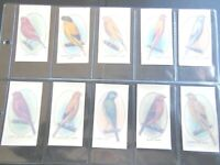 1933  Player AVIARY & CAGE BIRDS transfers   set 50 cards Tobacco Cigarette  #2