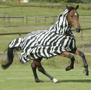 Bucas Zebra Fly Rug Combo