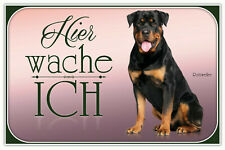Rottweiler Hund Blechschild Schild gewölbt Metal Tin Sign 20 x 30 cm CC0331