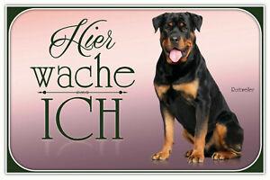 Rottweiler Chien Pancarte en Tôle Signe Métal Voûté Étain 20 X 30 CM CC0331
