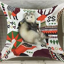 Ferret Hammocks Bed for Cage, Hammock for Small Pet Kitten, Ferret, Bunny, Rat