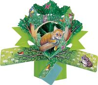 3D Pop Up Card Cat Woodland Kittens Blank Occassion Greeting Cards Keepsake Gift