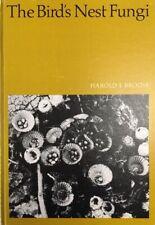 'Bird's Nest Fungi' Brodie- 1975- University Toronto- MYCOLOGY, Nidulariaceae
