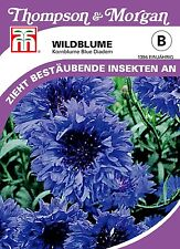 Kornblume - Centaurea cyanoides, Wildblumen Bienenweide Samen Saatgut 1396