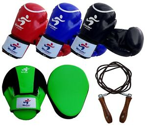 Master Sports Training Boxing Set Boxing Gloves Focus Mitts Jumping Rope Leather