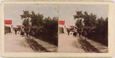 Route d'un Village Chèvres Photo Stereo Vintage Colorié à la main
