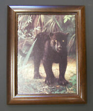 "Charles Frace  9""x12"" Framed Canvas Print ""Black Jaguar"""