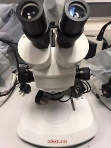 GX microscope GXMXTL 3101