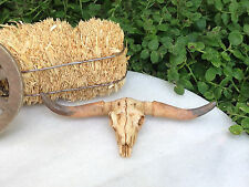 Miniature Dollhouse FAIRY GARDEN Farm Accessories ~ WESTERN Longhorn Steer Skull