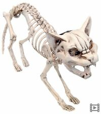 Animated Screaming Skeleton Cat with Light Up Eyes Halloween Decoration Prop