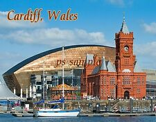 Wales - CARDIFF - Travel Souvenir Flexible Fridge MAGNET