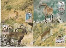 WWF 4 x Card - Ethiopia 1990 - Steenbok / Walia Ibex (095)