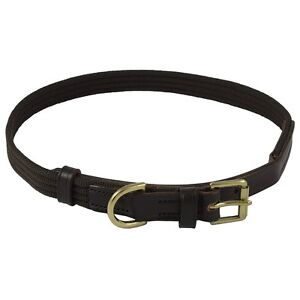 Brown English Bridle Leather Dog Collar Brown Webbing and Polished Brass