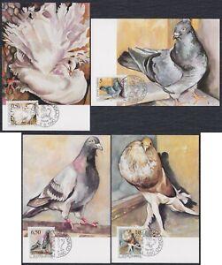 Yugoslavia 8.6.1990 Pigeons - Birds, CM