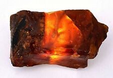 189.05 Ct Natural Honey Baltic Amber Untreated Specimen Poland Certified Rough