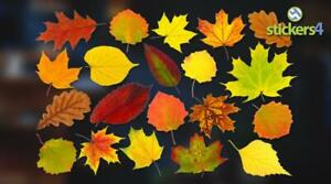 Photorealistic Autumn Leaves Shop Window Stickers - Pack 1