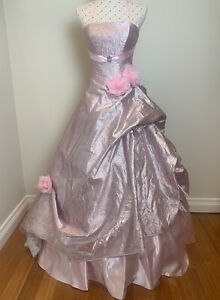 PRINCESS DRESS Size 10 to 14 Pink Gown Long Formal Evening Wedding