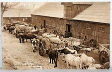 Postcard ARGENTINA 1908 - Trasporte de lana - Compania Comercial y Ganadera