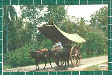 (CWC) Malaya 1950s/1960s Malay Bullock Cart, Malacca Postcard #3319 Near Mint