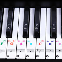 Removable Colorful Music Keyboard Piano Stickers For 49, 54 ,61or 88 Key Piano
