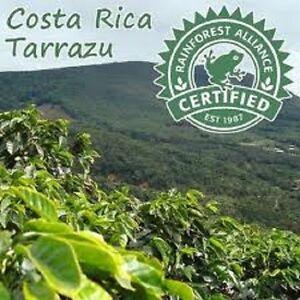5 lbs Costa Rica SHB Tarrazu La Pastora Green Un-Roasted Coffee Beans Fresh Crop