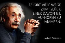 Albert Einstein Spruch 7 Blechschild Schild gewölbt Metal Tin Sign 20 x 30 cm