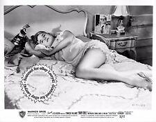 Lot of 5a, SEXY Carroll Baker, Eli Wallach stills BABY DOLL (1956)vintORG studio